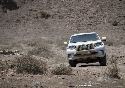 TOYOTA LAND CRUISER-8
