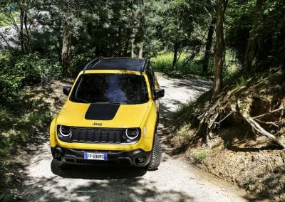 New Jeep Renegade MY19_TRAILHAWK (1)